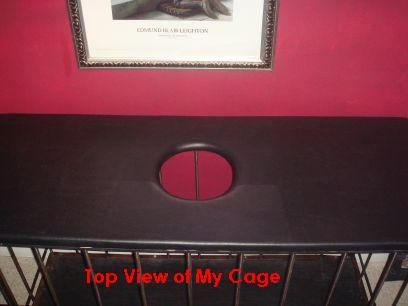 doggie_cage_3